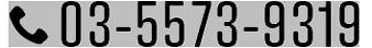 03-5573-9319
