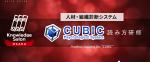 非公開: 2019年2月◆大阪◆人材・組織診断システム『CUBIC』読み方研修|Knowledge Salon By 採活力