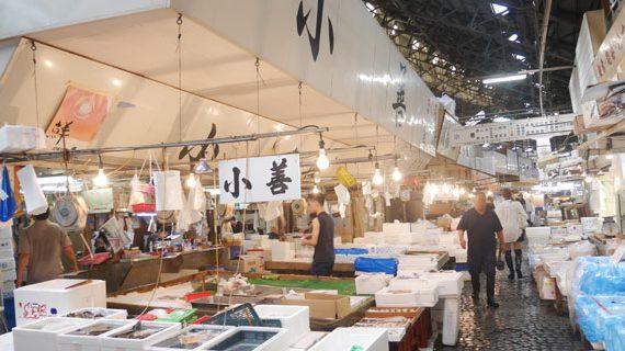 築地の伝統を引き継ぎ、豊洲で新しい歴史をつくっていく老舗仲卸店の販売・配送スタッフの採用事例。